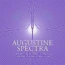Augustine Spectra E-Gitarre Heavy, lila  .012-.054